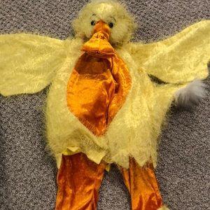 Adorable Duck Costume